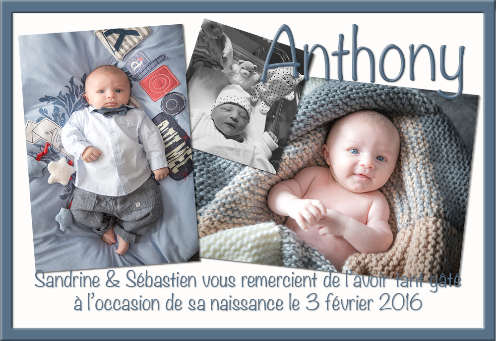 ANTHONYessai3.jpg