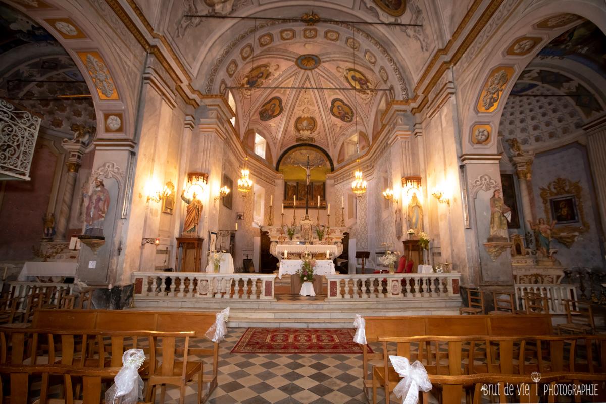 Baptême de A. capocorsinu